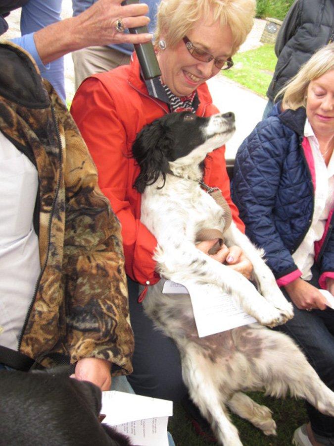 Harvest Fair Dog Show